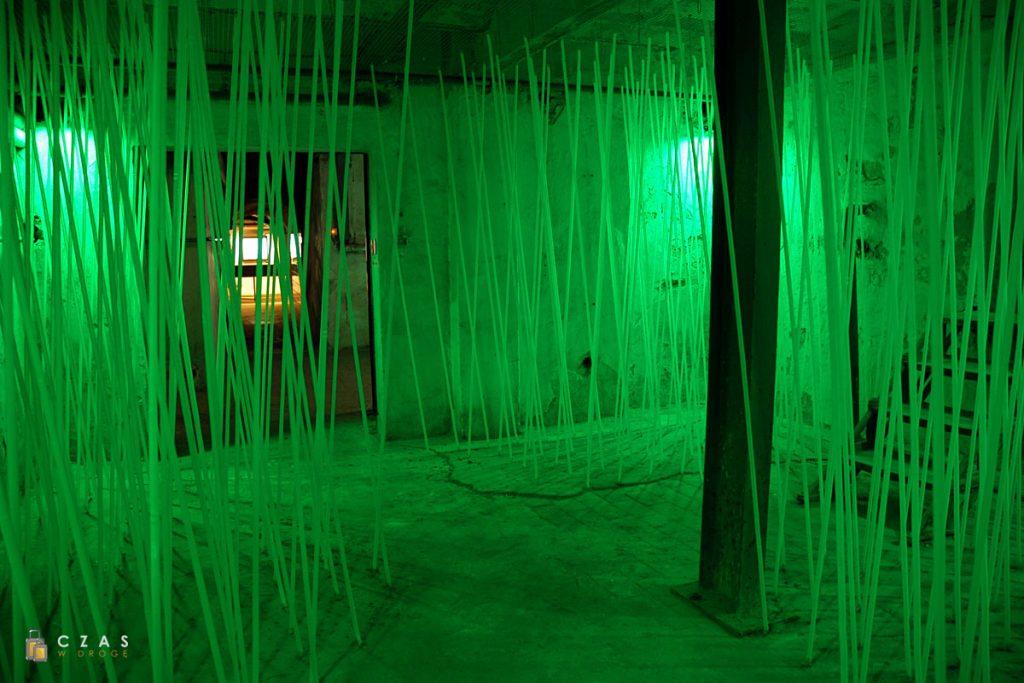 Ta instalacja ma pokazać w jaki sposób na tyczkach hodowany jest chmiel - choć w rzeczywistości tyczki te mogą mieć 12 metrów wysokości.