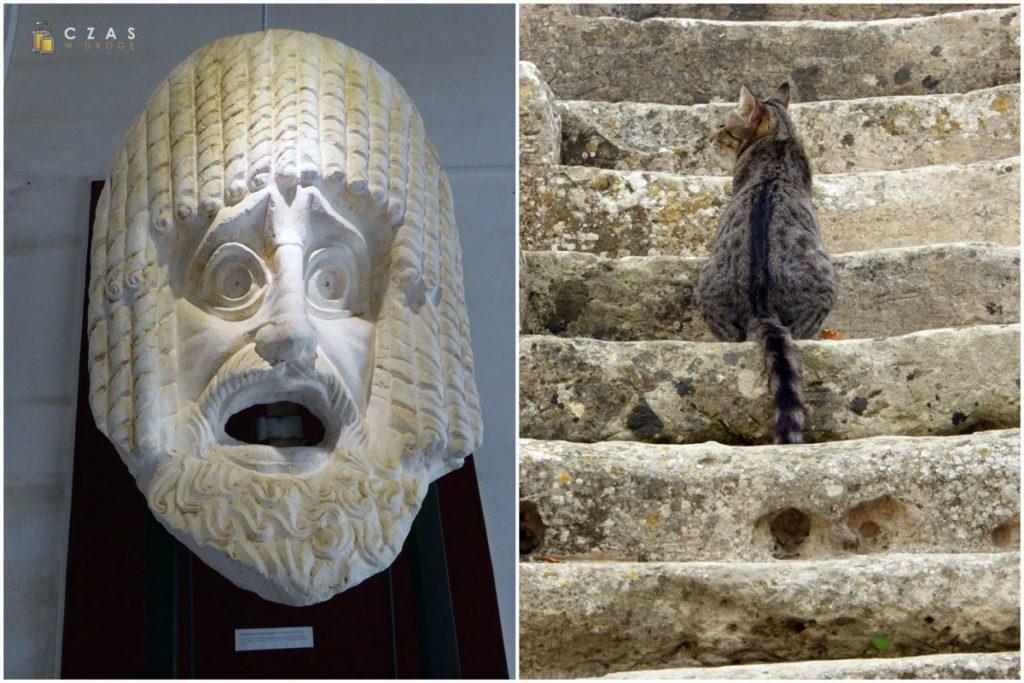 Museo di Teatro Romano - fragment ekspozycji / Jeden z rezydentów teatru - niechętny do zapozowania ;)