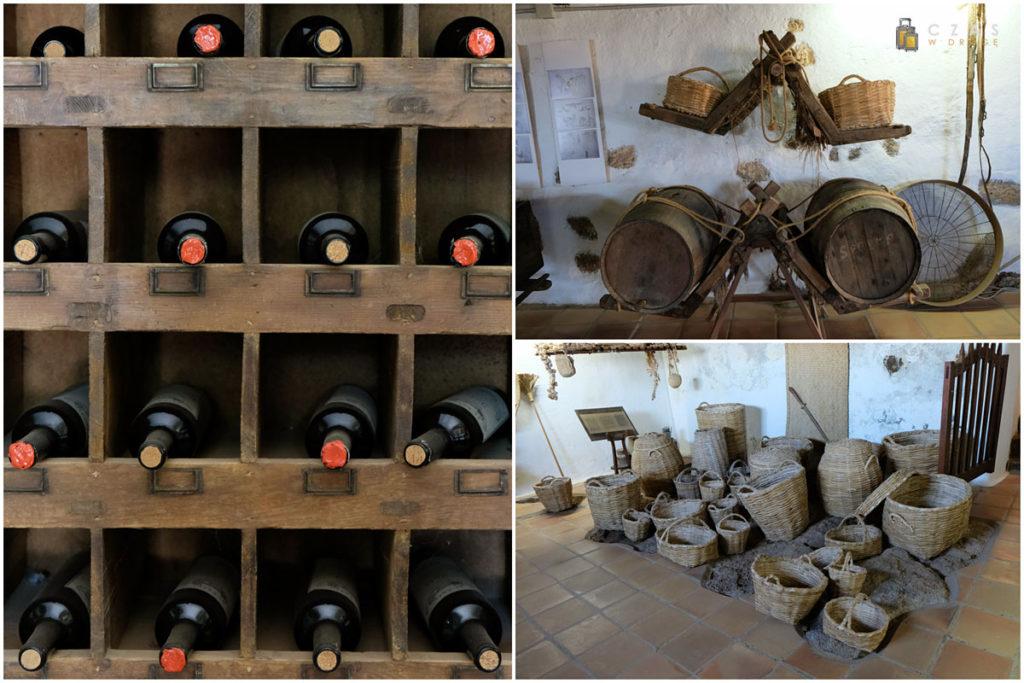 Fragmenty wystaw w Museo Agricola El Patio