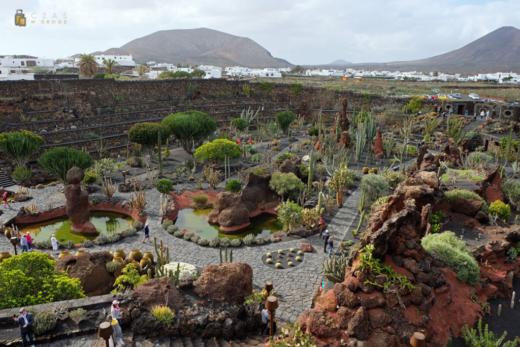 Widok na Jardin de Cactus