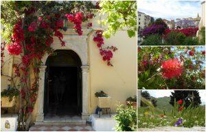 Korfu - wyspa pełna kwiatów
