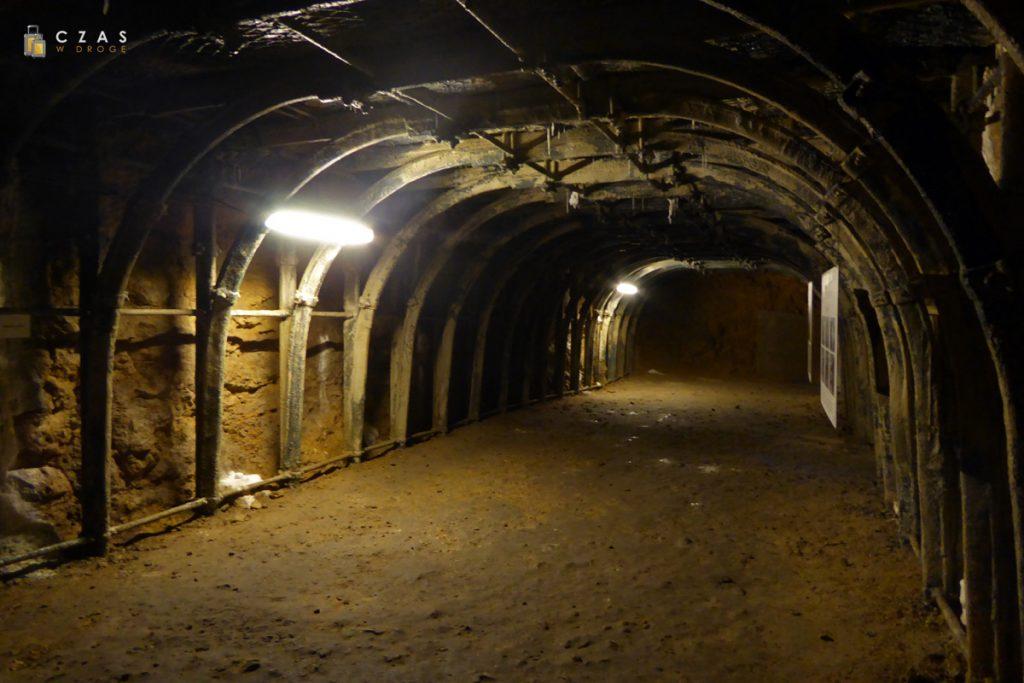 Podziemia Będzin - jedna z sal bliżej wejścia
