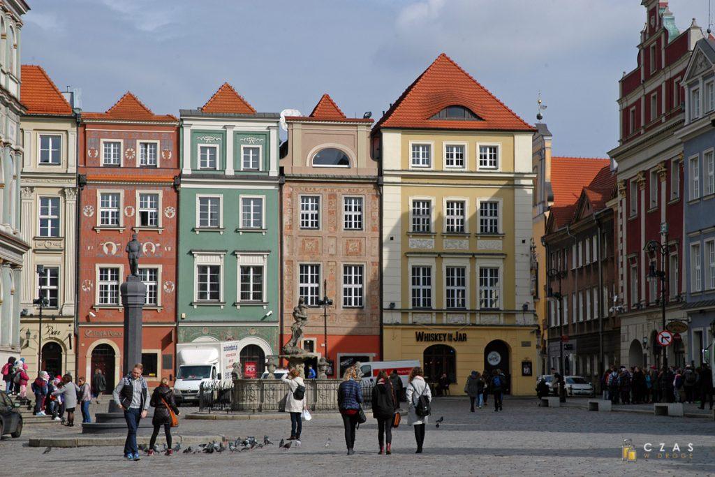 Rynek, Poznań