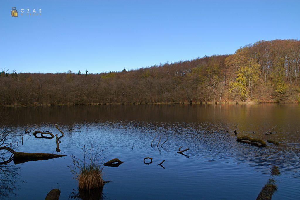 Jezioro polodowcowe w Parku Narodowym Jasmund