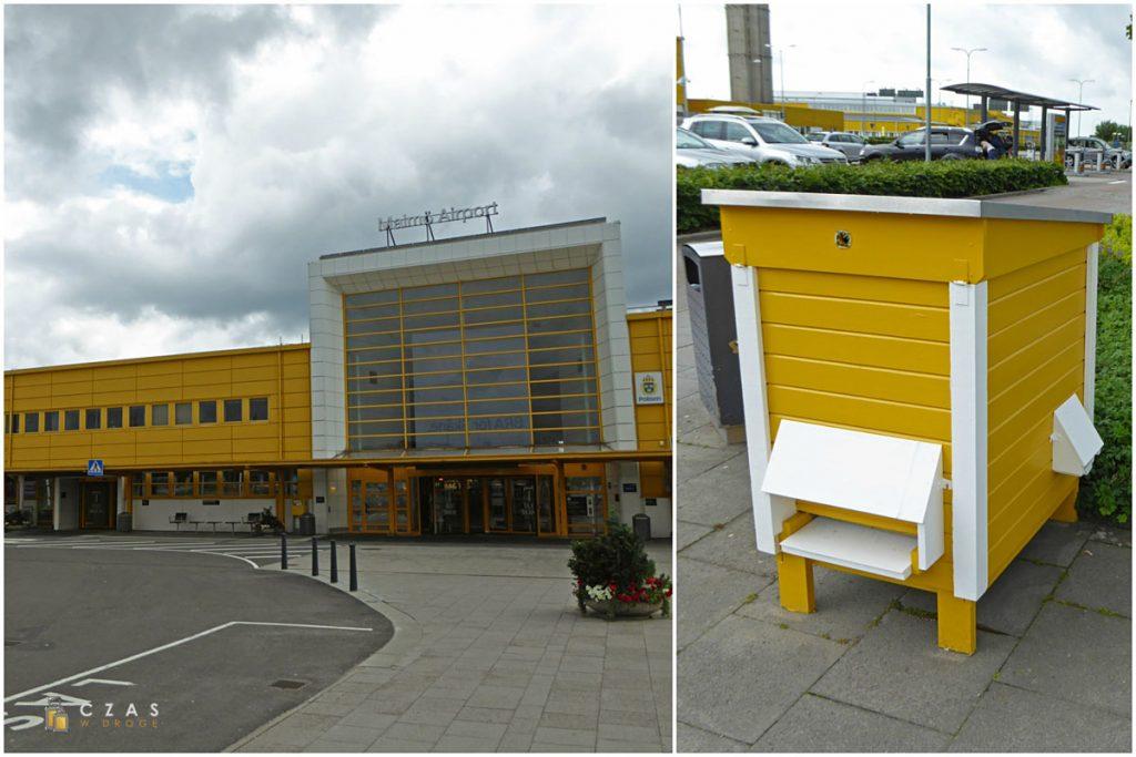 Charakterystyczny żółty terminal lotniska Malmö Sturup i... stojący przed nim lotniskowy ul ;)