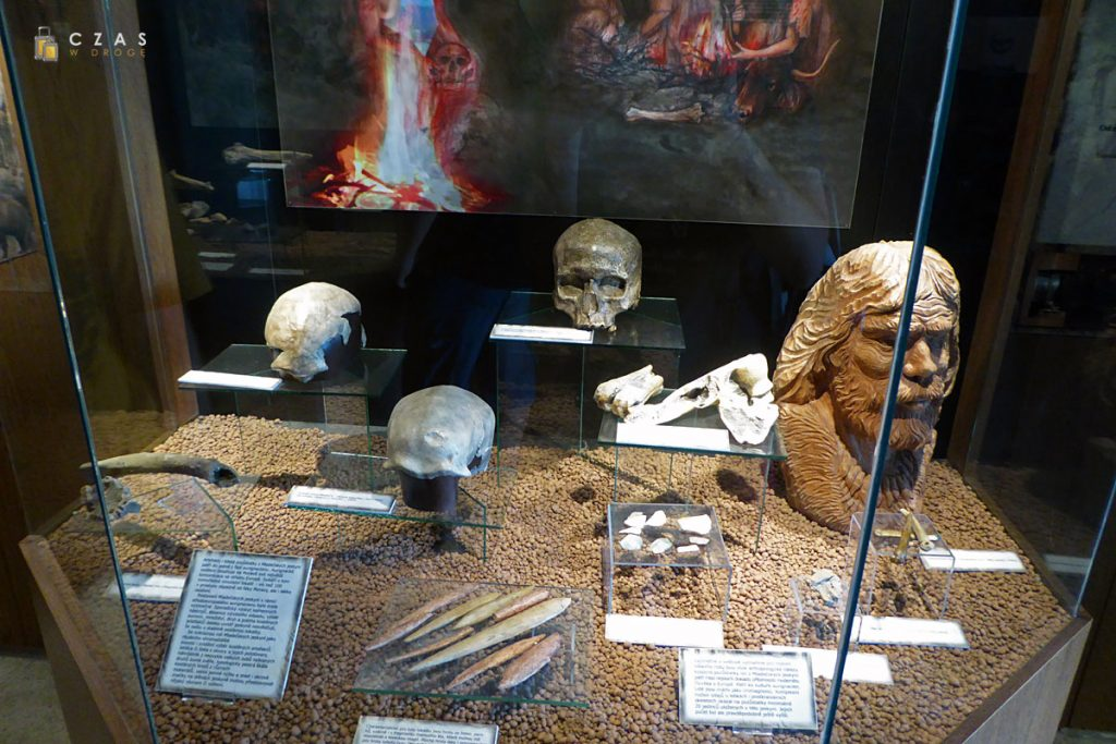 Jaskinie Mladečke - wystawa