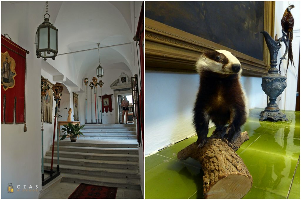 Jeden z zamkowych korytarzy / Wypchane zwierzęta przypominają o łowieckiej historii zamku