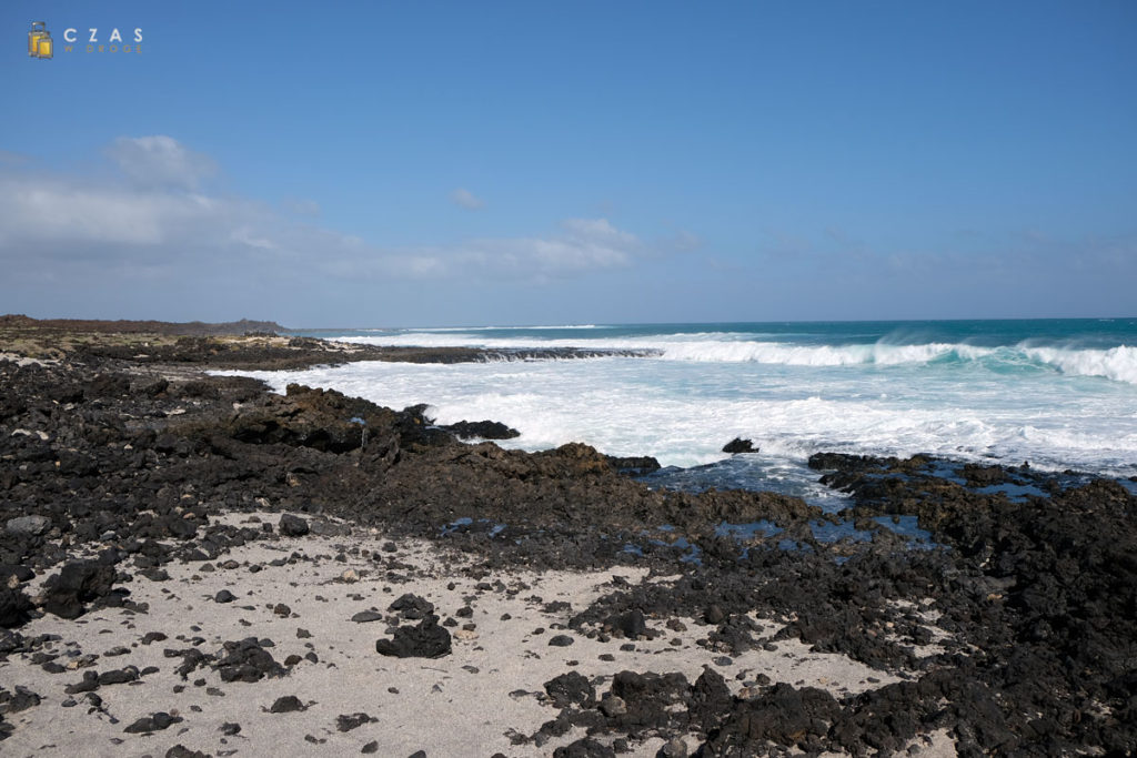 Wybrzeże w okolicy Jameos del Agua