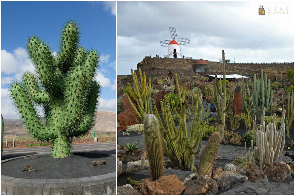 Jardin de Cactus - charakterystyczny kaktus z metalu ;) oraz młyn górujący nad ogrodem
