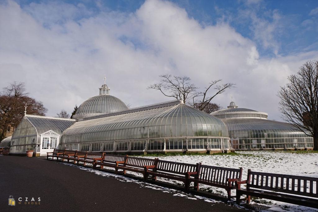 Ogrody botaniczne - Kibble Palace