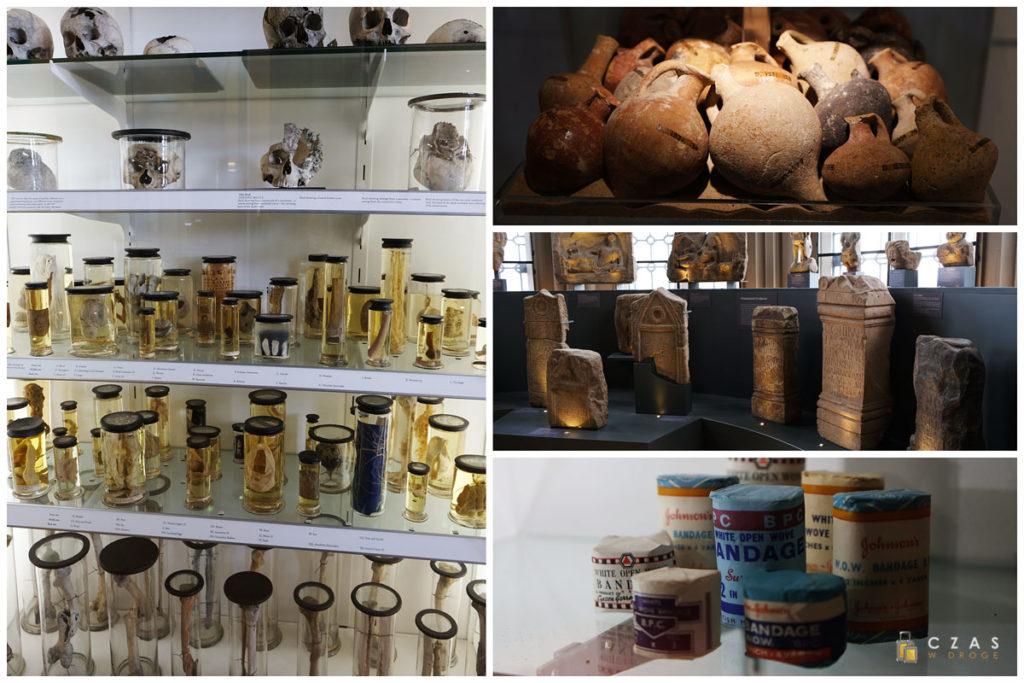 Kilka z eksponatów zgromadzonych w Hunterian Museum