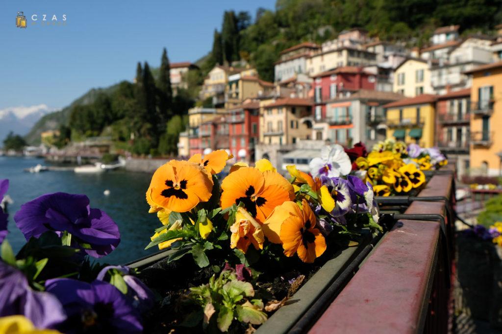Wiosną w całym miasteczku kwitną kwiaty :)